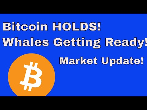 Market Update: Bitcoin Holds its Level | Whales Pump Coming?
