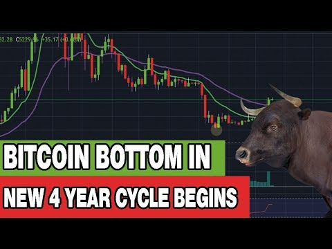 Bitcoin Bottom Is In - New 4 Year Cycle Begins - What To Expect From Here
