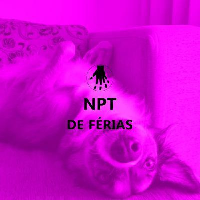 NPT de Férias: Metodologias, Latim, Grego, Passarinho e Chewie