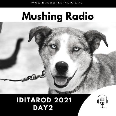 Iditarod 2021 Daily Coverage | Day 2