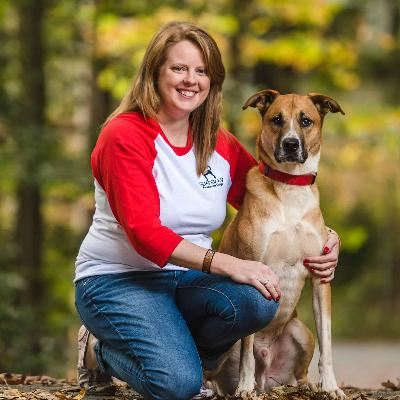 How to build a business within a marriage, with Amanda Baity of Semper K9