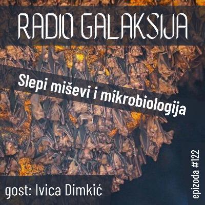 Radio Galaksija #122: Slepi miševi i mikrobiologija (Ivica Dimkić) [16-02-2021]