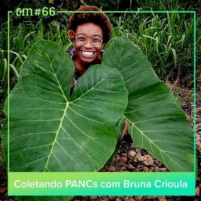 #66 - Coletando PANCs com BrunaCrioula
