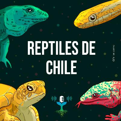 Episodio 7 - Reptiles de Chile