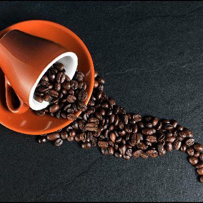 Estiagem e frio causam prejuízo bilionário aos produtores de café