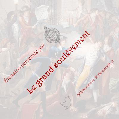 #17 - Français, histoire d'une volonté hégémonique (avec Médéric Gasquet-Cyrus)