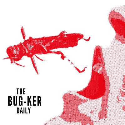 Daily: BUZZ FEED – Why eating insects will save the world