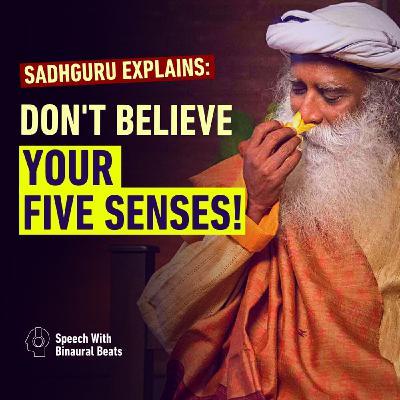 Don't Believe Your Five Senses! | Sadhguru Explains
