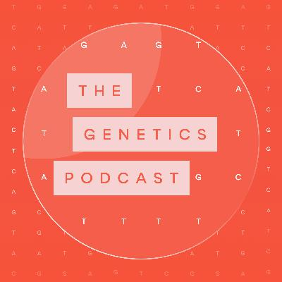 Ep 38 Big Data in genomics - why we need 'the cloud' and AI to make sense of it all with Dr Maria Chatzou Dunford