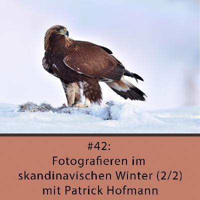 Fotografieren im skandinavischen Winter (2/2) - mit Patrick Hofmann