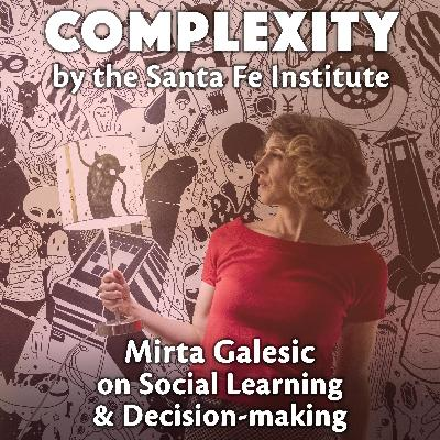Mirta Galesic on Social Learning & Decision-making
