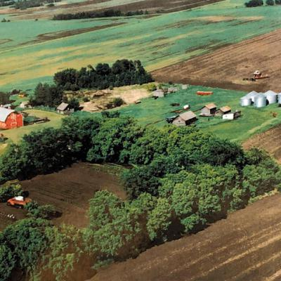 Back in the Day: Summertime on the Farm by Norma Galambos