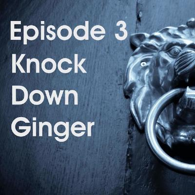 Episode 3 - Knock Down Ginger