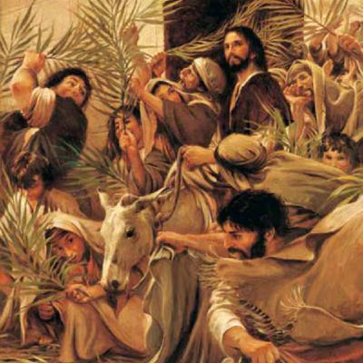 The Not So Triumphal Entry