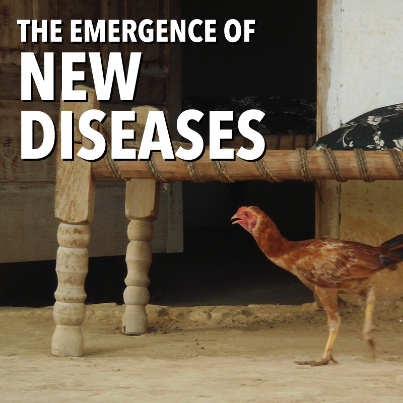 EP02 - The Emergence of New Diseases