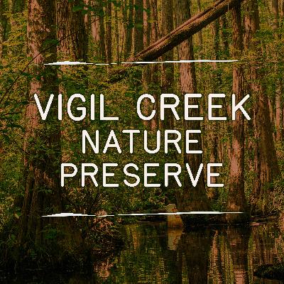 Vigil Creek Nature Preserve 1