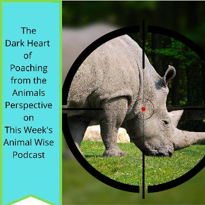 Poaching's Dark Heart