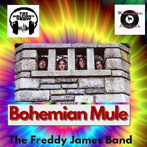 Bohemian Mule