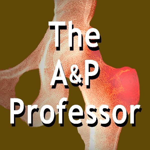 Episode 40 Intro | TAPP Radio Preview