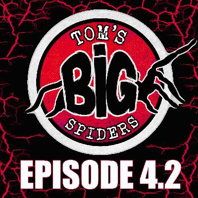 Q & A with Billie from Tom's Big Spiders