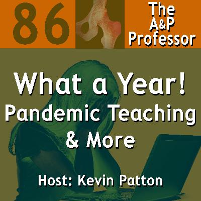 What a Year! | Pandemic Teaching & More | A Reflection | TAPP 86
