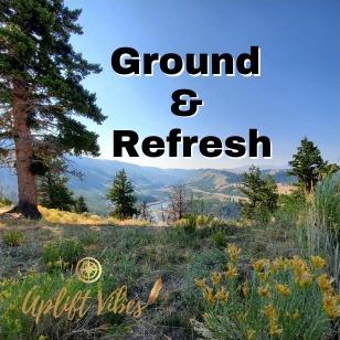 Ground & Refresh (5 min meditation)