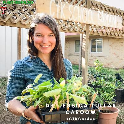 11. School Gardens, Public Health, and So Many Tomatoes w/  Dr. Jessica Tullar Caroom