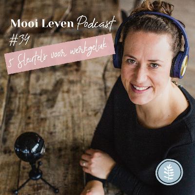 Mooi Leven Podcast #34 | Vijf sleutels voor werkgeluk
