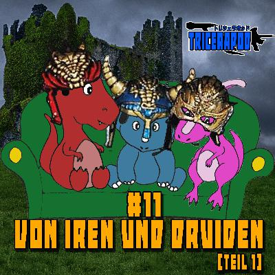 #11 - Von Iren und Druiden [Teil 1] | Mystic Knights of Nir na Nóg