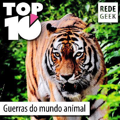 TOP 10 – Guerras do mundo animal