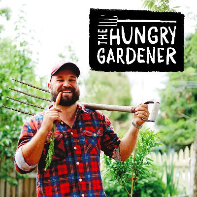 22 - Lou Ridsdale - Food is Free Inc - The Hungry Gardener Podcast - EP22
