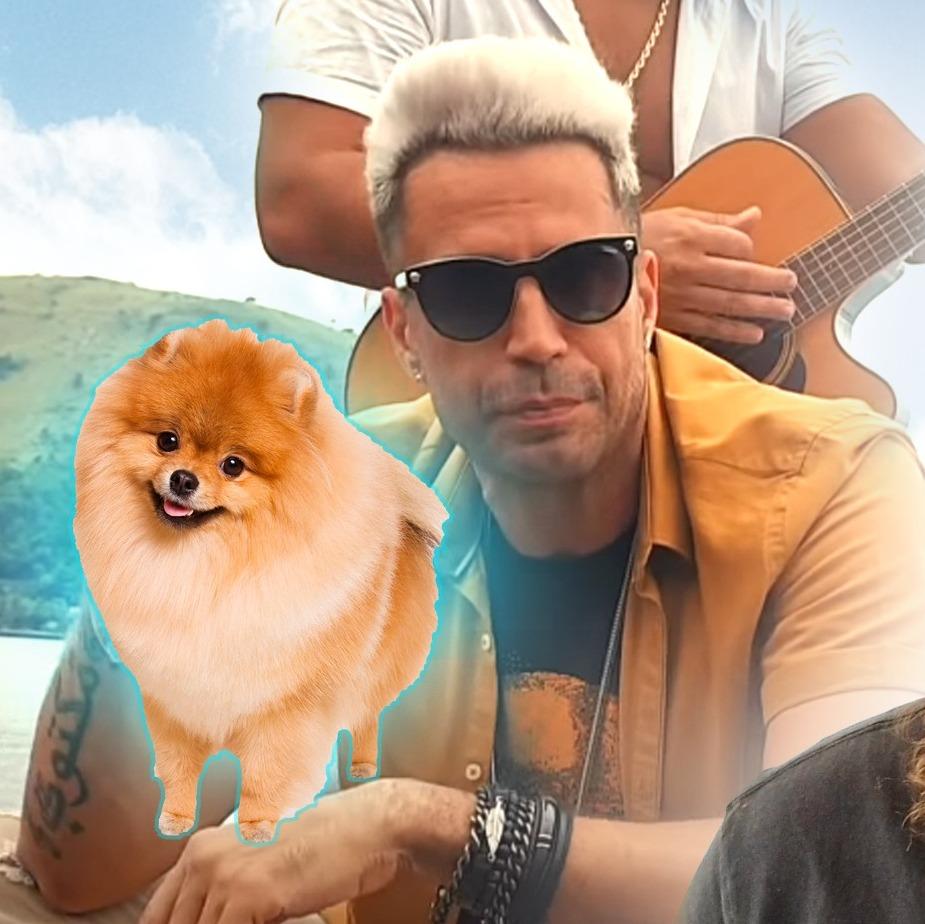 Latino desiste de sorteio ilegal de cachorro no Instagram após críticas