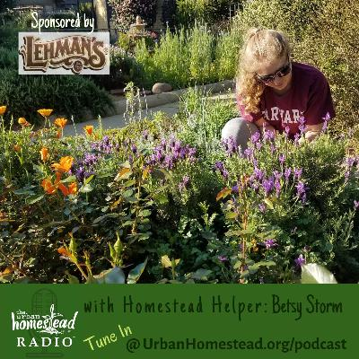 "Urban Homestead Radio Episode 76: ""Conversations with Our Homestead Helpers"" - Betsy Storm"