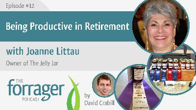 Being Productive in Retirement with Joanne Littau