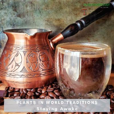 38. Plants in World Traditions- Staying Awake