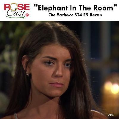 """Elephant In The Room"" | 'The Bachelor' S24 E9 Recap"