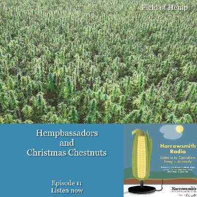 Hempbassadors and Christmas Chestnuts