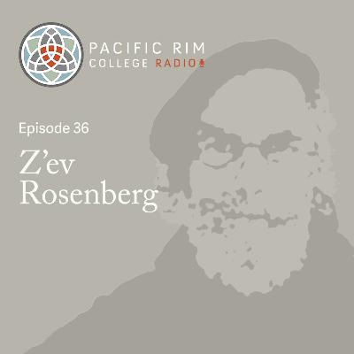 #36 Z'ev Rosenberg on Full Strength Chinese Medicine, Reverence for Classical Texts, and Pink Floyd