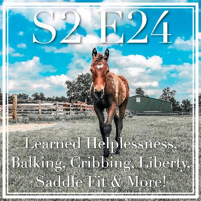 24 || Learned Helplessness, Balking, Cribbing, Liberty, Saddle Fit & More!