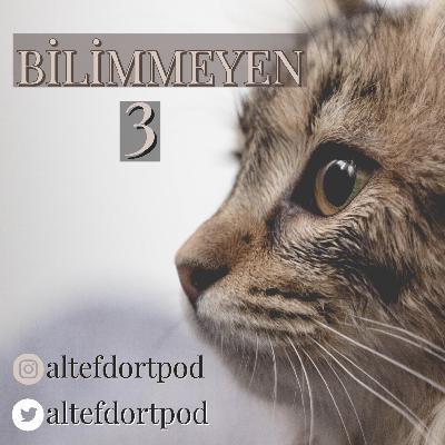 Bilimmeyen #3 - Konumuz Kediler - Kediler'in davranışları ve Bilinmeyen yönleri