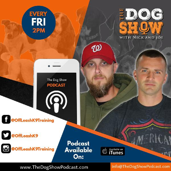 The Dog Show with Nick And Joe - Episode 1