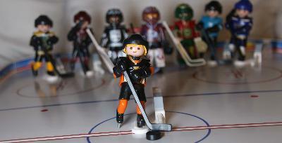 #020 NHL Vorschau 20/21 Los Angeles, Anaheim, San Jose, Arizona