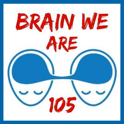 105: Zrcadlo Mysli a Záhada Vědomí