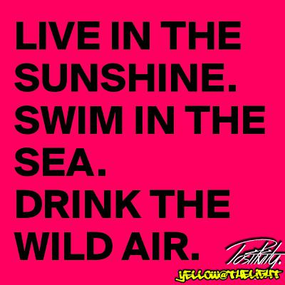 Positivity. - www.yellowatthelight.com