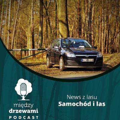 News z lasu - Samochód i las [Opowiada Michał Wieciech]