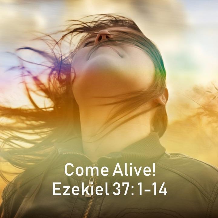 Come Alive!, Rebeca Yoder