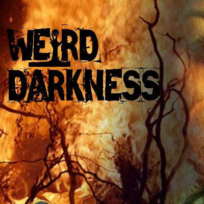 """""""THE WITCHFINDER AND HIS WEIRD WOODEN BOX"""" and 4 More Creepy Paranormal Stories! #WeirdDarkness"""