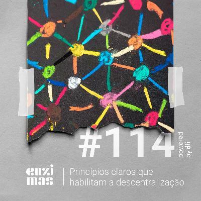 ENZIMAS #114 - Princípios claros que habilitam a descentralização
