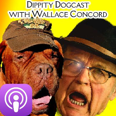 TMD Podcast for Sat Aug 1: s4 e17 Vacation Special! Featuring an interview with Wallace Concord of the Dippity Dogcast!! #TMD #TMDpodcast #PodcastPlatter #Dogs