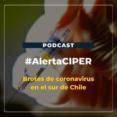 """Capítulo 4 """"Brotes de coronavirus en el sur de Chile"""""""